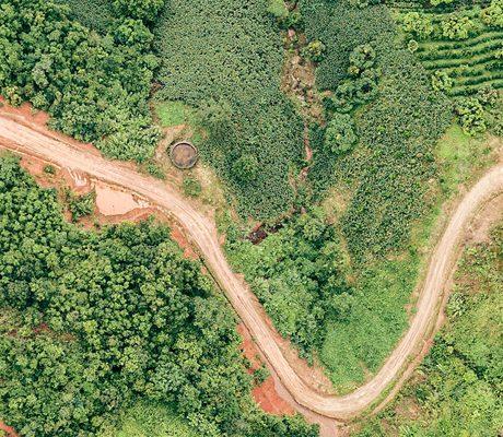 phoenix-han-1386023-unsplash-paysage-vert