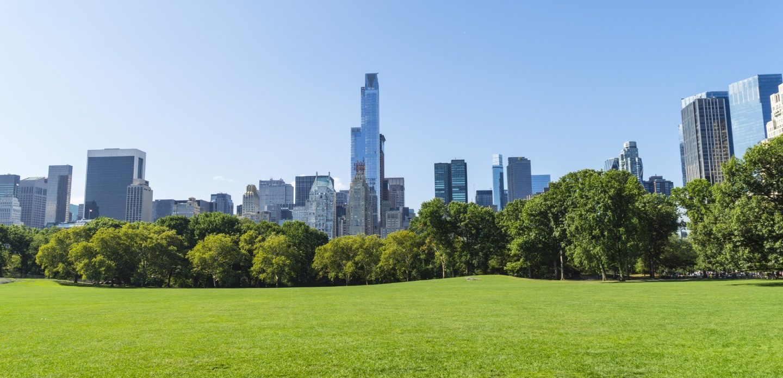 Skyscrapers bordering Central Park in New York